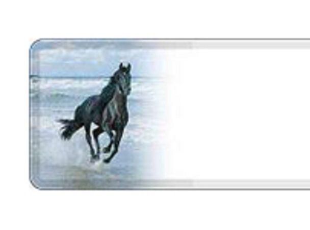 tekstplaat paard zoom